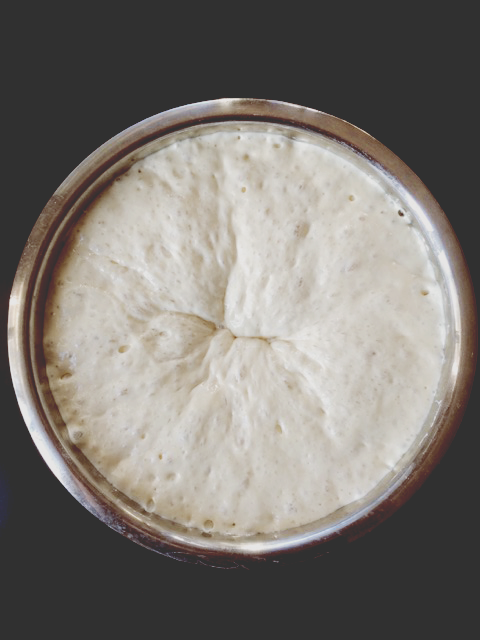 The Dough after the first hour of rising.